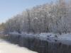 Kühmnokk-luiged jõel
