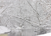 Lumine jõeke