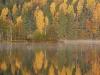 Sõtkapaar sügisesel järvel