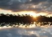 päikesetõus rabajärvel