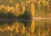 Vaikne järveke sügisel