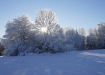 Külm hommik haanjamaal
