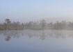 Udune järveke soos