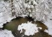 Talv tuli