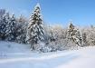 Talve võlu
