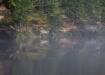 Udusel jõell