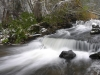 Tilleorg - ahja jõgi