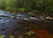 Piusa jõgi