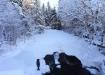 Külmunud jõgi