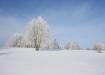Lumivalge
