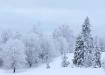 Talv saabus tagasi...