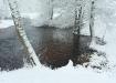Värske lumi